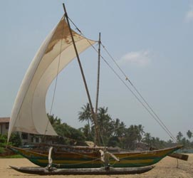 3955916-Sinhalese-Outrigger-Canoe-0Small